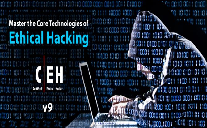 Pay To Do Professional Masters Essay On Hacking