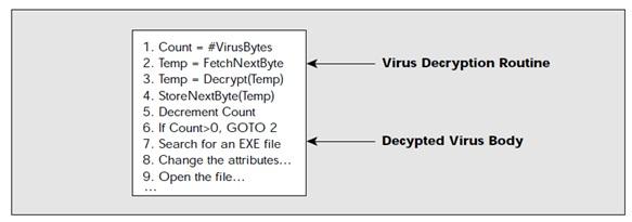 Decrypt virus