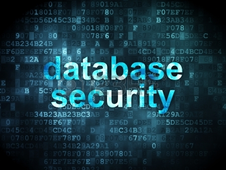 soutechventures web development training Database-Security